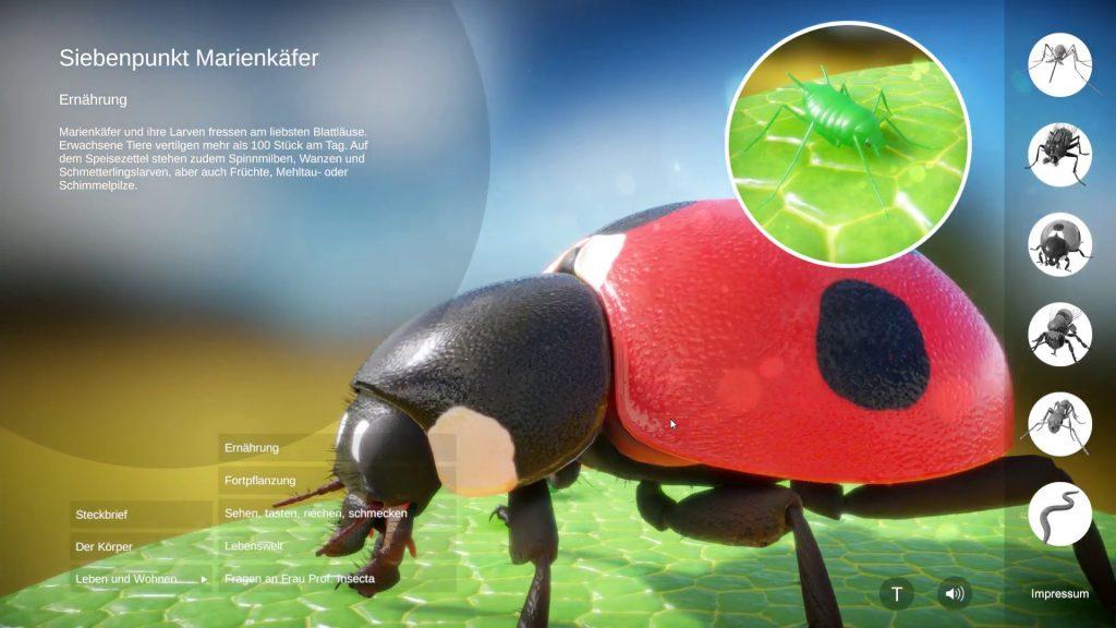 Siebenpunkt Marienkäfer, 3D-Echtzeit mit Unity © Daniel Ackermann