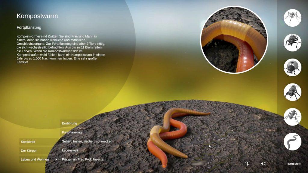 Kompostwurm, 3D-Echtzeit mit Unity © Daniel Ackermann